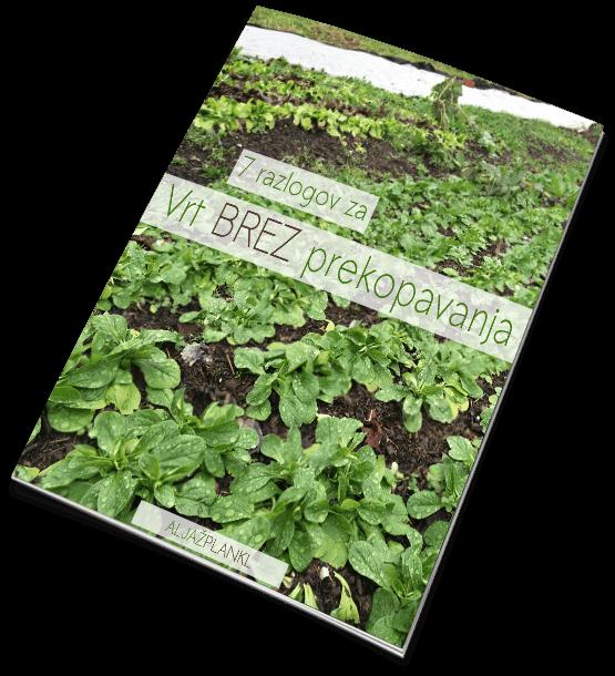 Aljaž Plankl ● 7 razlogov za Vrt BREZ prekopavanja ● Zastiranje in nega tal